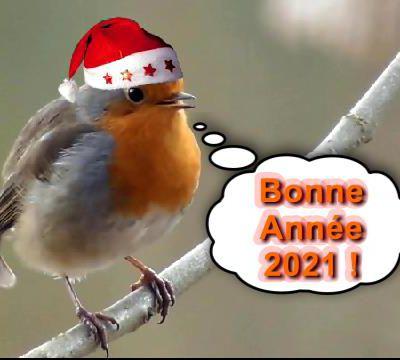 BONNE ANNEE 2018 - MEILLEURS VOEUX !