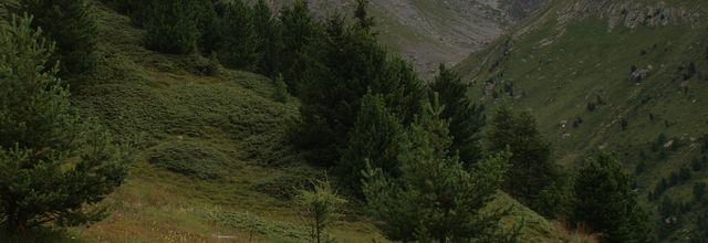 Parc de la Vanoise/Massif de l'Orgére/GR 5/GR55/ lac de la Partie