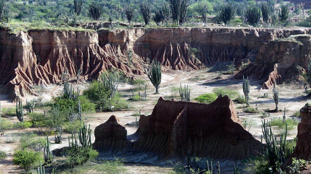 San Agustin et le désert de la Tatacoa