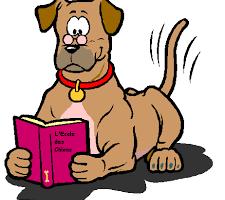 """Mon chien/ """"Quand je le gronde, il n'arrête pas de bâiller. Pourquoi ?!"""" - Réponse de la Fondation Assistance aux Animaux : """"Il se sent dans ses petits souliers et ses baillements sont destinés à vous apaiser (...)"""""""