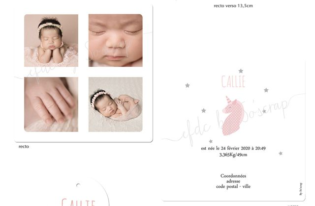 Quelques petites nouveautés au catalogue naissance animaux licornes ....