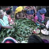 La pirekua est un chant traditionnel tarasque - LNO