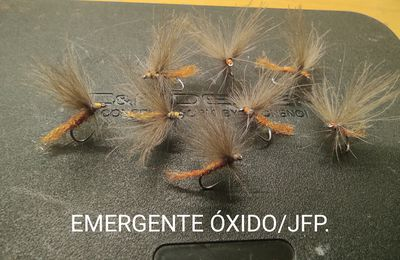 EMERGENTE ÓXIDO/JFP.