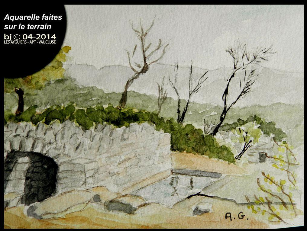 Les AIGUIERS de SAINT SATURNIN-lès-APT ( VAUCLUSE )