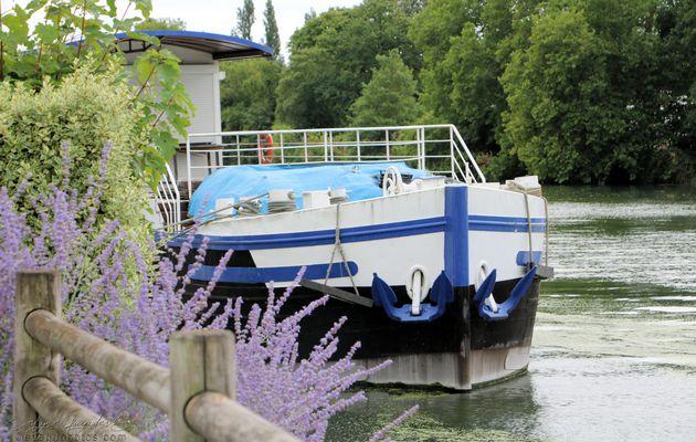 De l'Autre Côté de la Seine..