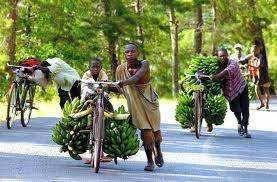 Rwanda : vélos interdits en ville ...