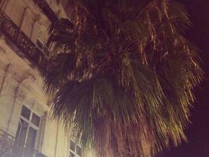 De Nice à Montpellier