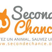 Adoption chien, Adoption chat et adoption tous animaux de compagnie avec Seconde Chance