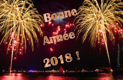 Bonne et Heureuse Année 2019 à tous!