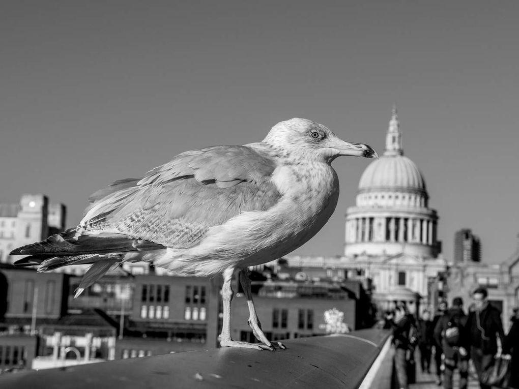 My last trip to London
