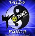 Taebo Punch