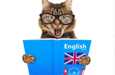 Top Online English courses for 2020|For Adults & Beginner
