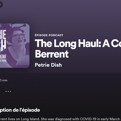 Podcast 27 Octobre 2020 - Spotify - The Long Haul: A Conversation With Diana Berrent