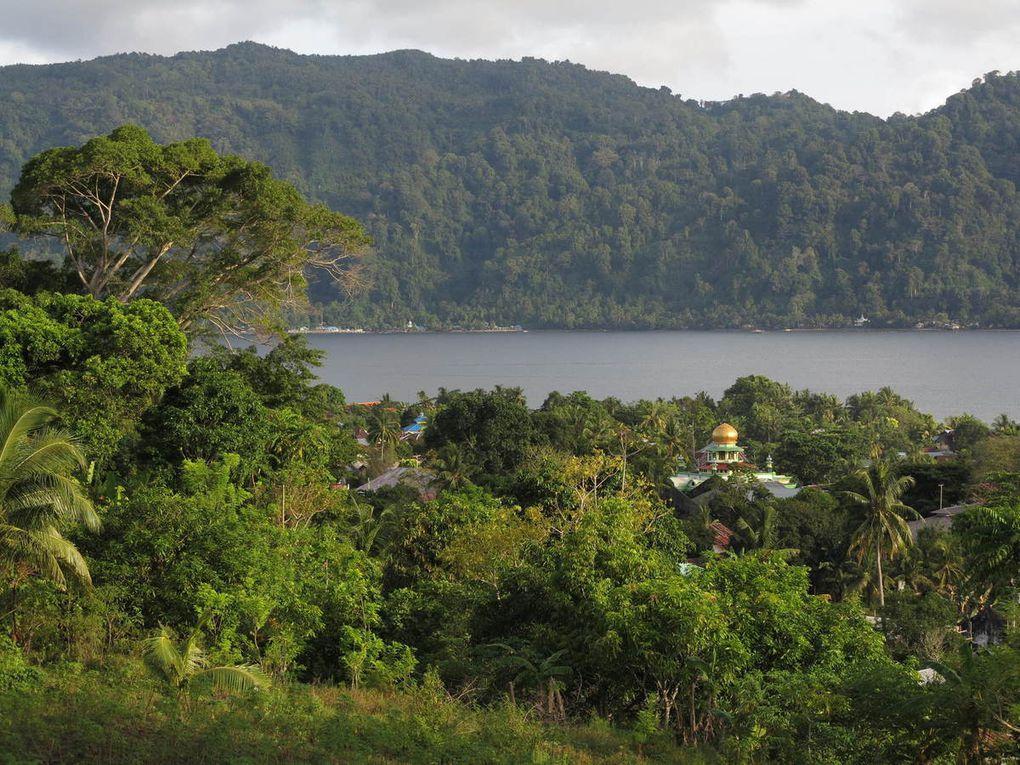 Depuis 1661, ce fort domine le port et la ville de Banda Neira, face au volcan Api. Bien sûr, étant donné  les éruptions, les tremblements de terre, il  a été plusieurs fois reconstruit... Désormais bétonné, ce fort n'en occupe pas moins une position imprenable et impressionnante. En-dessous, se trouvent les vastes demeures des administrateurs coloniaux qui s'ingéniaient à y vivre comme en  Hollande.