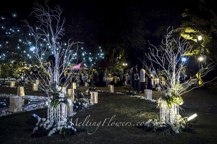 Latest Wedding Theme Decor Ideas For Outdoors