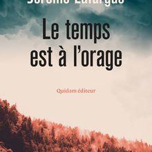 Le temps est à l'orage - Jérôme Lafargue