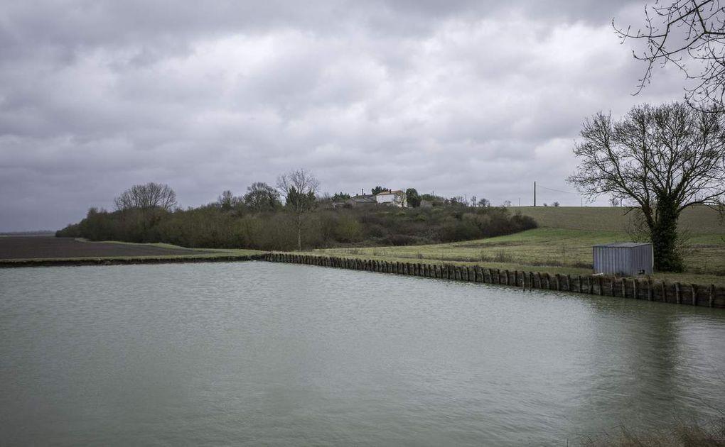 « Une île, des îles » : l'expérience insulaire en Vendée