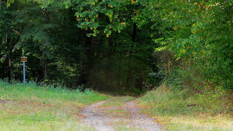 la Route de Berne