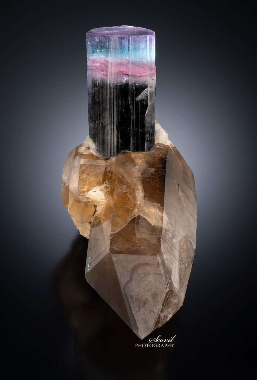 Tourmaline from Queen mine, Pala, Caifornia (specimen and photo by : Jeffrey Kent collection)