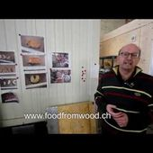 Food from Wood -Edible insects produced with woodbased plant waste