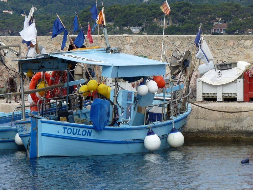LE LONG  TL923458 , dans le port de Saint Elme , la Seyne sur Mer