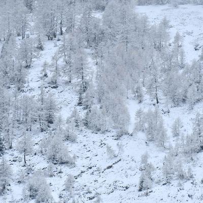 Mayens de Conthey - retour de la neige
