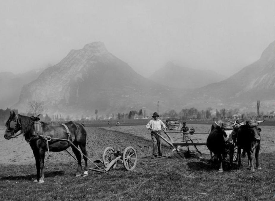 Le Sud-Ouest grenoblois au temps des champs