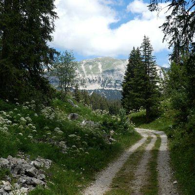 2 Jours sur les Hauts Plateaux : J1 Bivouac au Pas des Chattons