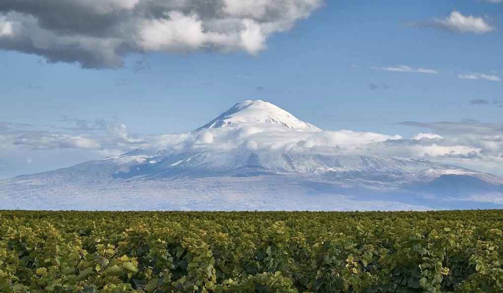 Domaine Karas : Arménie, une histoire viticole de plus de 6000 ans qui se perpétue