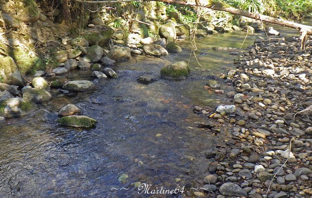 Le petit ruisseau ...