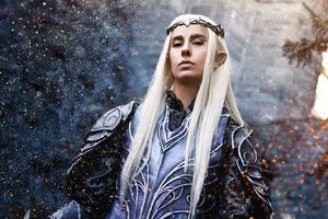 [Inspiration cosplay] The armored elvenking of Mirkwood