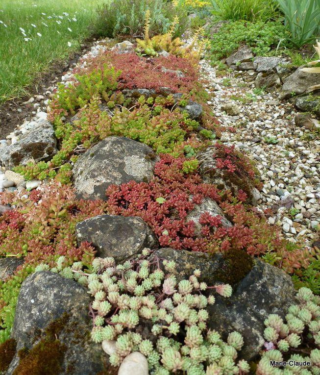 Un  cadre coloré et diversifié entoure joliment la pelouse.