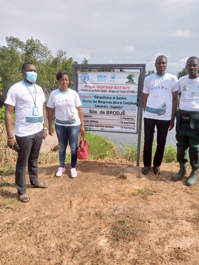Côte d'Ivoire : ces maternités aquatiques qui génèrent plus de 14 millions USD par an, en quête de sauvegarde