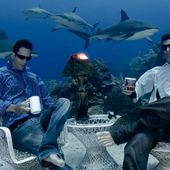 No, it's not photoshopped: Freedivers sip coffee with sharks 30 meters under sea