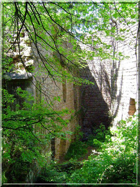 Diaporama château de Dreistein - Ottrott