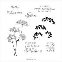 153271 Dentelle de la reine Anne tampon stampin up branche fleur merci