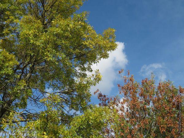 L'automne arrive...