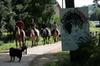 Gauchoux: le club d'équitation