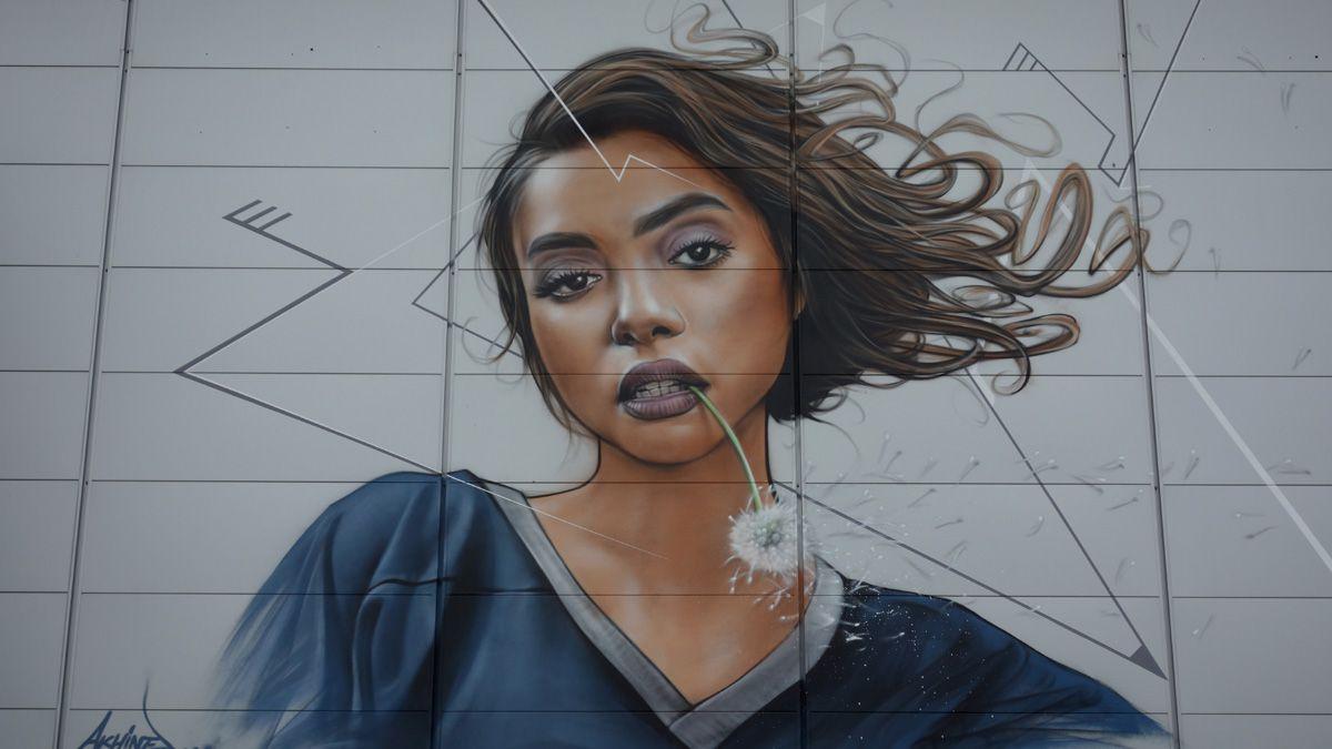 Street Art : Graffitis & Fresques Murales 77307 Montevrain