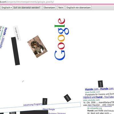 Google Spaßfunktionen