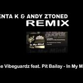 The Vibeguardz feat. Pit Bailay - In My Mind (Guenta K & Andy Ztoned Remix)