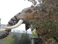 Balade à Nantes: l'éléphant et le nid en haut de la tour Bretagne