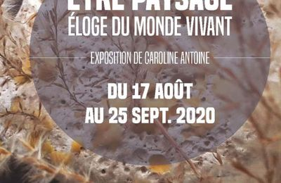 Le 3 septembre 2020, vernissage à 18 h, en présence de l'artiste. ''Être paysage éloge du monde vivant'' exposition de Caroline ANTOINE à Nancy Hôtel du département du 17 août au 23 septembre 2020.