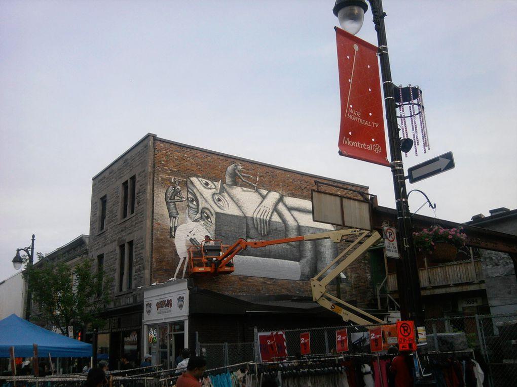 D'une année sur l'autre, des fresques peuvent disparaître pour laisser place à des nouvelles.