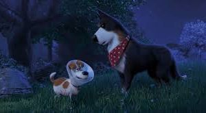 Comme des bêtes 2  ( The secret life of pets 2 )