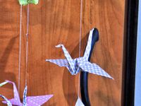 Test - Unboxing - Partenariat - Origami - Facile - Kirigami - Quilling - Iris Folding - Mobile - Grue - Compas Cutter - Outils