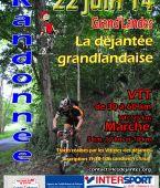 la dejantee grandlandaise, GRANDLANDES (Sortie VTT du 22/6/2014 / Ref. : 31065)
