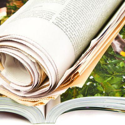 Quels sont les différents magazines concernant la nature que l'on peut trouver ?