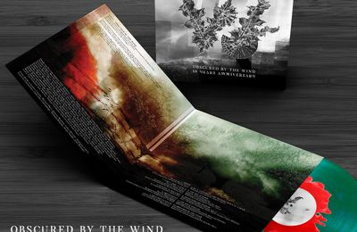 "🎵 THOT - Obscured by the wind - 10 years anniversary 12"" limited edition LP release"