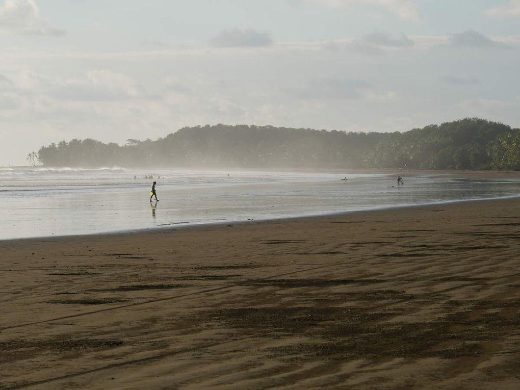Uvita sur la côte Pacifique est bordée de longues plages sauvages. La présence humaine n'a pas été envahissante pour la nature, par rapport aux  Antilles ou encore Cuba, les zones côtières sont  moins peuplées et par conséquent on  y observe  fréquemment des paresseux, toucans, coatis, aras, dauphins, ratons-laveurs, serpents etc.